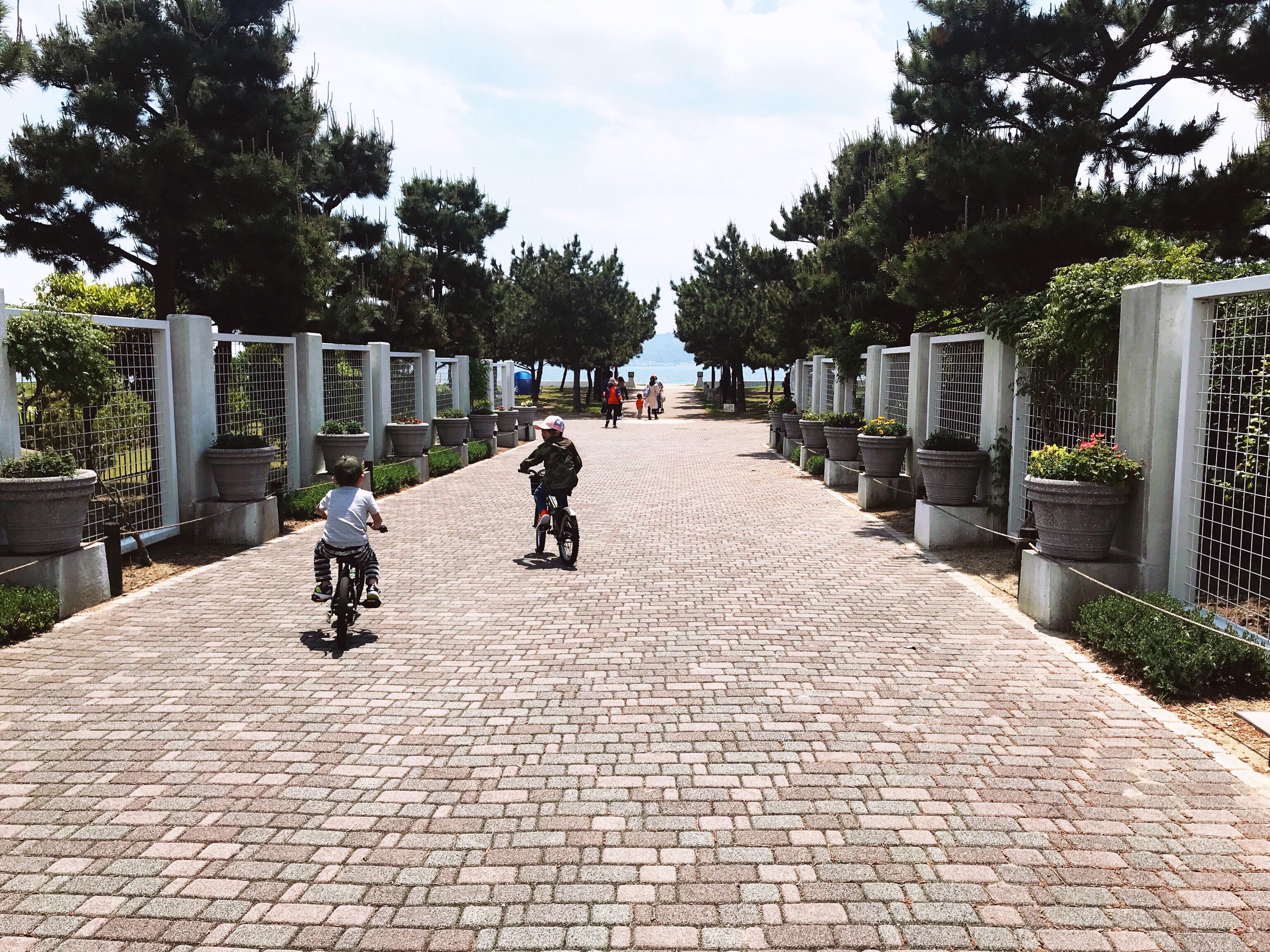 サイクリング☆☆☆